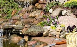 Nietypowe skalniaki. Najciekawsze pomysły na ogród skalny [ZDJĘCIA]