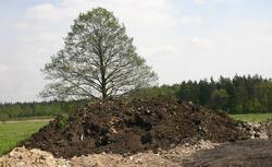 Definicja budowli ziemnej. Co przepisy mówią o nasypach, wykopach i wałach na działce