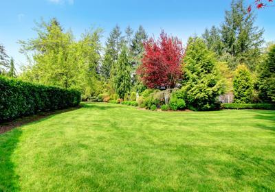 Jak dbać o trawnik podczas upałów? Podlewanie i koszenie trawnika latem
