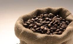 Kawa z zaparzacza