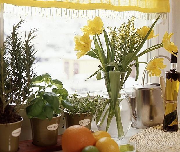Jak kwiatami rozweselić wnętrze?